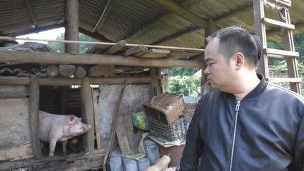 胖胖的山头『男人都吃大猪蹄子』