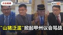 """2019扑杀逾400头山猪   甲州议长封诺依占""""冠军"""""""