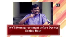 We'll form government before Dec 01: Sanjay Raut