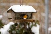 Vue de chez vous: les mangeoires pour oiseaux