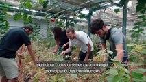 Les 5 Ponts sur l'île de Nantes : une micro- ferme urbaine écologique et solidaire démonstratrice