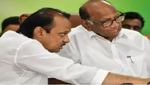 "NCP's Sharad Pawar says ""Do not endorse Ajit Pawar supporting BJP"""