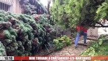 Une mini-tornade fait des dégâts à Châteauneuf-les-Martigues