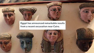 Egypt Reveals Rare Discovery Of Mummified Lion Cubs And Cats