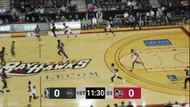 Tyler Ennis (29 points) Highlights vs. Erie BayHawks