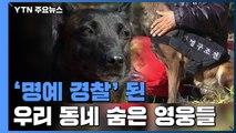 실종자 4명 가족 품으로...우리 동네 '명예 경찰' / YTN