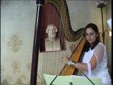 Ensemble Orchestral des Alpes de la Mer (musiciens en Duo)