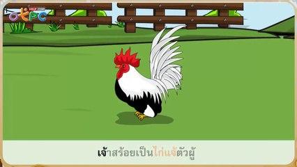 สื่อการเรียนการสอน นิทาน ไก่แจ้ สัตว์เลี้ยงของฉันป.2ภาษาไทย