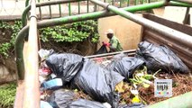 This week on #BiasharaZaFamilia, we meet the Mwangi family who runs a successful garbage collection business by the name Junky Bins Limited. Join our very own Venessa Ndavi tonight from 8.30pm-9pm to teach you one or two things about this business