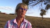 Klimawandel ist für Australiens Bauern bittere Realität