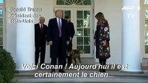 Trump décore Conan, héros du raid contre Baghdadi