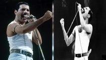 Freddie Mercury : révélations sur sa discrète dernière soirée d'anniversaire