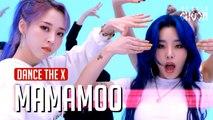 [Dance the X] 마마무 - HIP