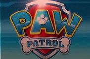 paw patrolSeaso 4   1 – Pups Save a Blimp  Pups Save a Chili Cook-Out Onlne - Paw Patrol