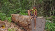 Amazon Burning: Death and Destruction in Brazil's Rainforest | Fault Lines