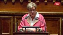 Prime crédit d'impôt transition énergétique : les inquiétudes de la sénatrice Denise Saint-Pé