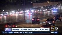Pedestrian killed on Loop 202