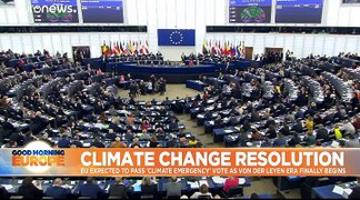MEPs back 'climate emergency' resolution to push for more aggressive action - 429 votes to 225