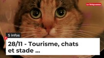 Tourisme, Chats et stade...Cinq infos bretonnes du 28 novembre