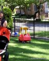 Funniest Babies and Daddy Moments - Happy Baby Family
