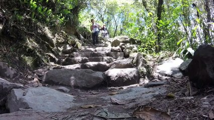 The Inca Trail - Medwyn Goodall