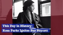 Rosa Parks' Story