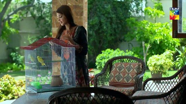 Deewar e Shab Episode 25 HUM TV Drama 30 November 2019