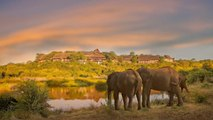 This Two-story Honeymoon Suite in Zimbabwe Overlooks a Wild Elephant Hot Spot