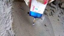 Il suffit d'un peu de sel pour faire sortir des animaux incroyables du sol sur la plage - couteaux