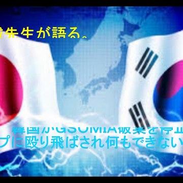 桜井誠先生が語る。 韓国GSOMIA破棄を停止。 トランプに殴り飛ばされ何もできないアリザマ。