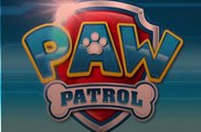 paw patrolSeaso 4   2 – Pups Save a Teeny Tiny Penguin  Pups Save the Cat Show Onlne - Paw Patrol