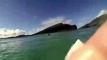 Ce surfeur croise la route d'un gros requin en prenant une vague