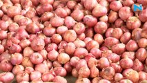 Trading firm to import 11,000 tonnes onion from Turkey: Report