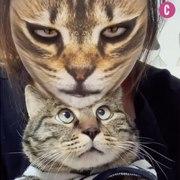 Vous voulez faire peur a votre chat Essayez le fil
