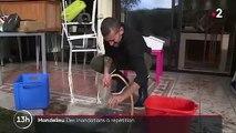 Alpes-Maritimes : le dur réveil de Mandelieu-la-Napoule après les intempéries