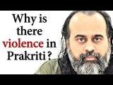 Why is there so much violence in Prakriti?    Acharya Prashant (2019)