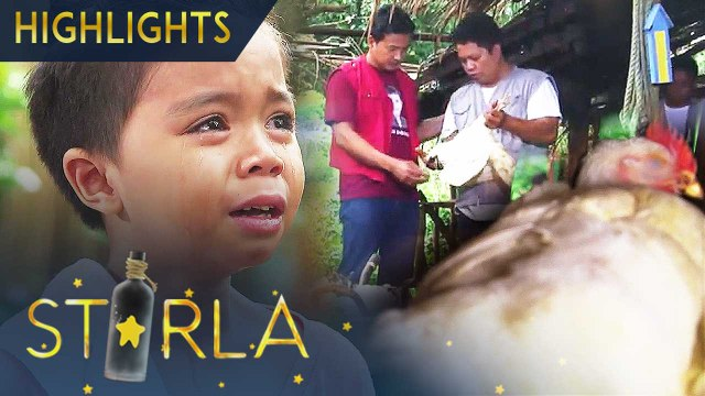 Buboy is distressed by what happened to their hens | Starla