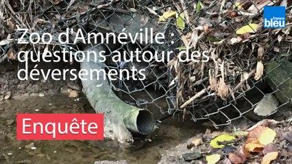 Zoo d'Amnéville : questions autour des déversements