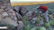 Southern Arizona Looked Like Tibet In The Past: Study