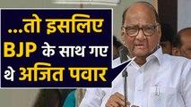 Sharad Pawar ने बताया,BJP के साथ क्यों गए थे Ajit Pawar   वनइंडिया हिंदी