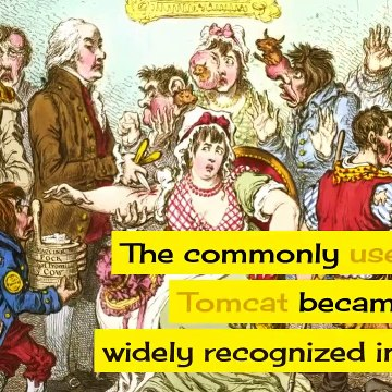 Why Are Male Cats Called Toms?