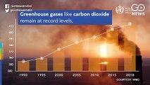 पिछले दस साल रहे सबसे गर्म: WMO रिपोर्ट