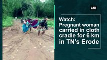 Watch: Pregnant woman carried in cloth cradle for 6 km in TN's Erode