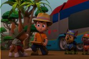 paw patrolSeaso 4   20 – Pups Save the Mail  Pups Save a Frog Mayor Onlne - Paw Patrol