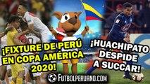 COPA AMÉRICA: FIXTURE SELECCIÓN PERUANA 2020   ALEXANDER SUCCAR NO SEGUIRÁ EN HUACHIPATO