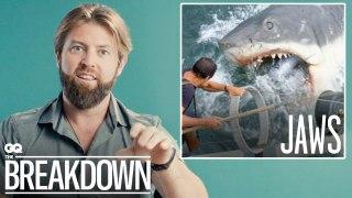Wildlife Expert Breaks Down Animal Scenes from Movies