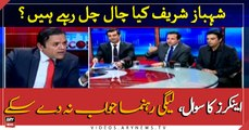 PML-N leader could not answer anchor's questions