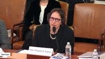 Impeachment Witness Pamela Karlan Quotes Brett Kavanaugh During Hearing