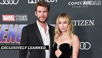 Showdown? Miley & Liam May Face Off In Court For First Time Since Split