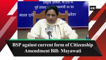 BSP against current form of Citizenship Amendment Bill: Mayawati